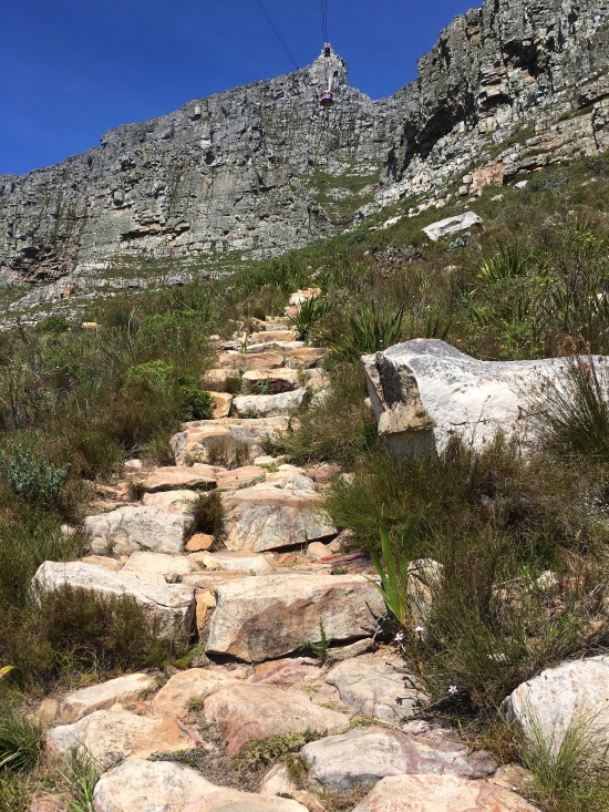 Table Mountain Trail