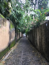 There were many lush passages as shortcuts
