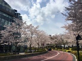 Tokyo Midtown Park